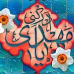 حمید رضا k