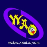 amir_ojaghi