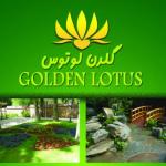 گلدن لوتوس -GOLDEN LOTUS