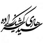 drsarkeshikzadeh.com