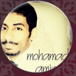 mohammad.amin.pishdar
