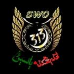 swo313