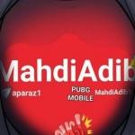 Mahdi Adib