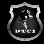 info_dtci3t