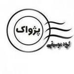 گروه موسیقی پژواک-ساسان فولادپنجه