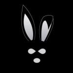 حاجی خرگوشه