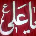 سید سجاد (لا فتی الا علی لا سیف الا ذولفقار)