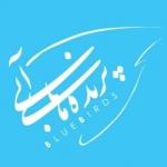 iranbluebird
