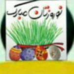 mohammadsamimi36