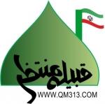 QM313