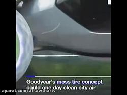 """""""لاستیک های خزه ای"""" دشمن جدید آلودگی هوا"""