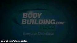 تمرینات ورزشی 2