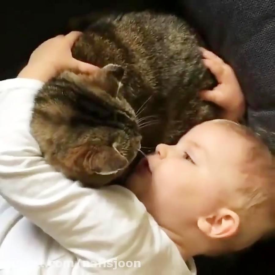 نینی و گربه