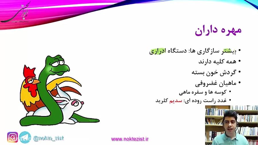 دفع و تنظیم اسمزی در مهره داران - تدریس
