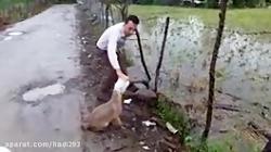 حیوانات را دوست بداریم