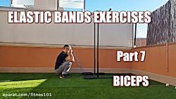 تمرین عضلات جلوبازو با ...