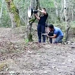 امیر مقاره در طبیعت