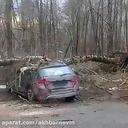 طوفان در مسکو یک کشته و ...
