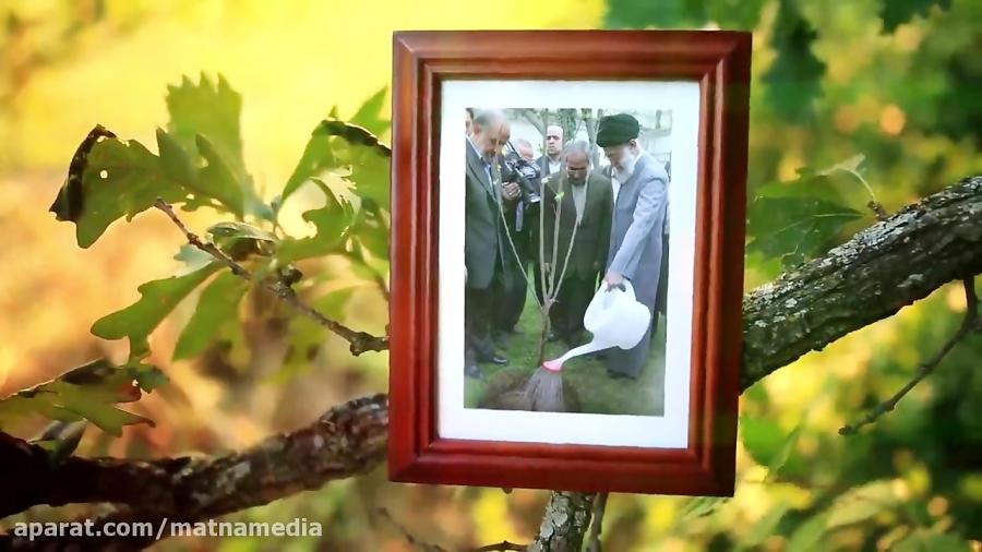 پویانمائی روز درختکاری