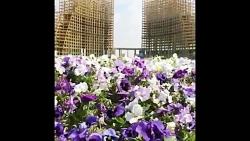 بهار زیبای طبیعت در شهر...