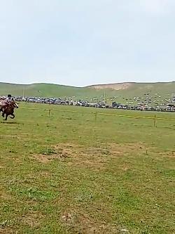 اسب سواری زنان قهرمان آ...