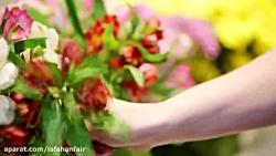 هفتمین نمایشگاه گل و گیاه و گیاهان دارویی اصفهان