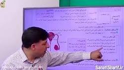 ویدیو آموزش دستگاه تولید مثل مردان زیست یازدهم