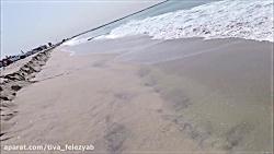 Beach Metal Detecting RING