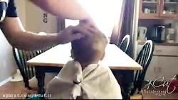 آموزش اصلاح موی کودک