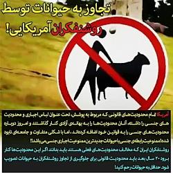 ⭕️ تجاوز به حیوانات تو...