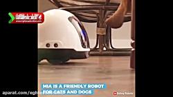 رباتی که به حیوانات غذا...