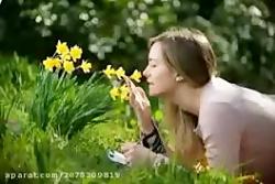 موسیقی اصیل-آهنگ بی اعت...