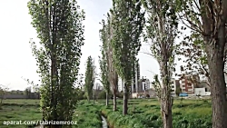 باغ کوچه حسن!