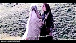 ویدیویی که گلشیفته فرا...
