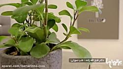 برترین ها - دکتر محمد فت...