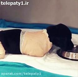 پیدا شدن یک توله سگ با دست و پای بریده در ترکیه