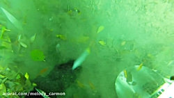 Underwater Metal Detecting a WATERFALL - I...