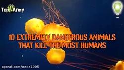 خطرناک ترین حیوانات در ...