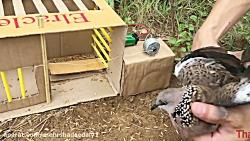 ساخت دستگاه شکار حیوان...