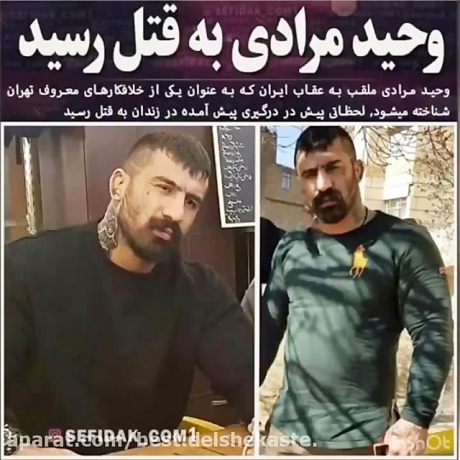 وحید مرادی به قتل رسید Vahid Moradi
