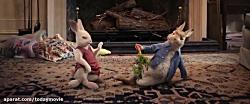 فیلم انیمیشن  پیتر خرگو...