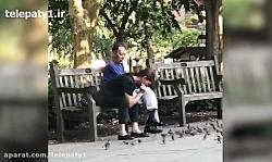 ببینید این زن چگونه گنجشک می گیرد!