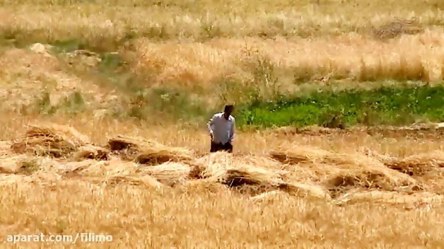 آنونس فیلم مستند «اسب چوبی»