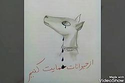 از حیوانات حمایت کنیم