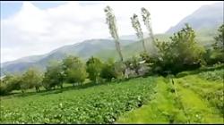 منطقه گردشگری اذر بیان ...