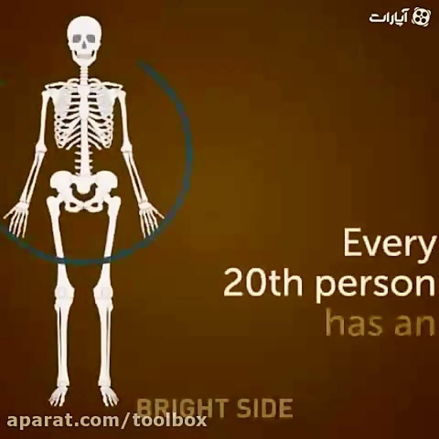 همه-چیز-در-مورد-استخوان-های-انسان