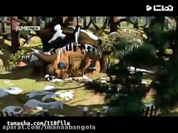 انیمیشن ماشا و میشا