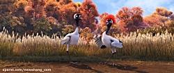 دانلود انیمیشن Duck Duck Goos...