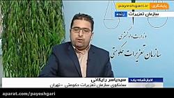 احتکار ۱۹۰۰ خودرو در انبار ایران خودروی شیراز