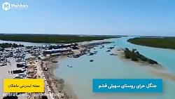 ویدیو معرفی جنگل حرای روستای سهیلی قشم